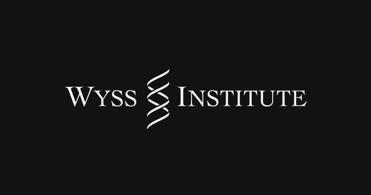 Wyss Institute Can Identify Ebola Virus On Dry Paper Test