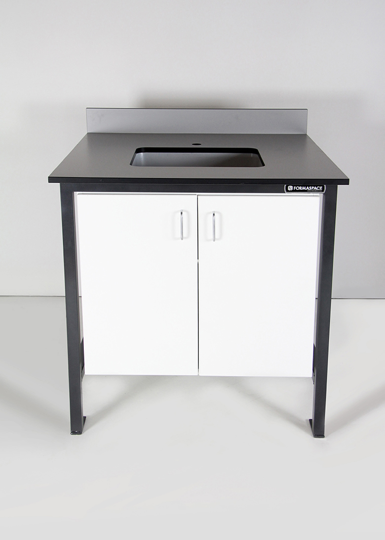 Modular Wet Lab Sink With Cabinet