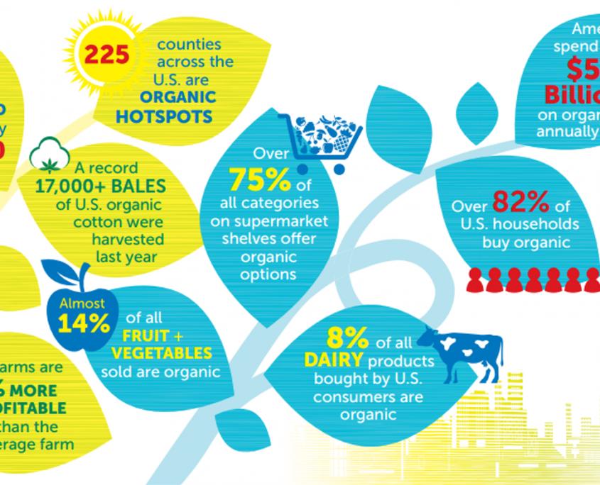 Organic good trends