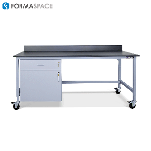 fixed casework with mobile cart