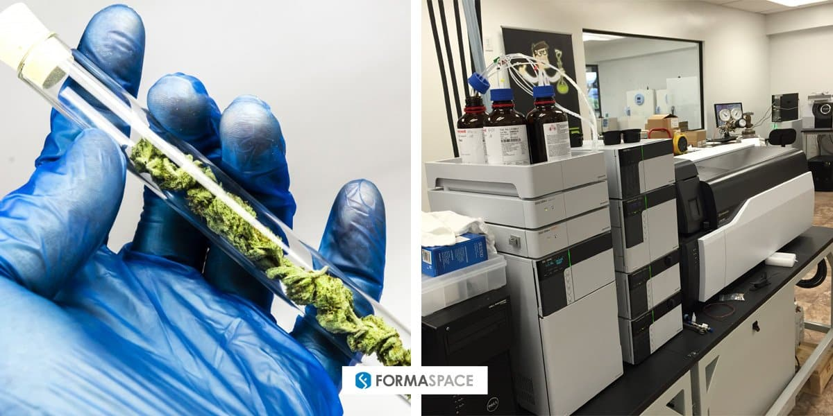 Formaspace cannabis testing laboratory medical marijuana discussion.