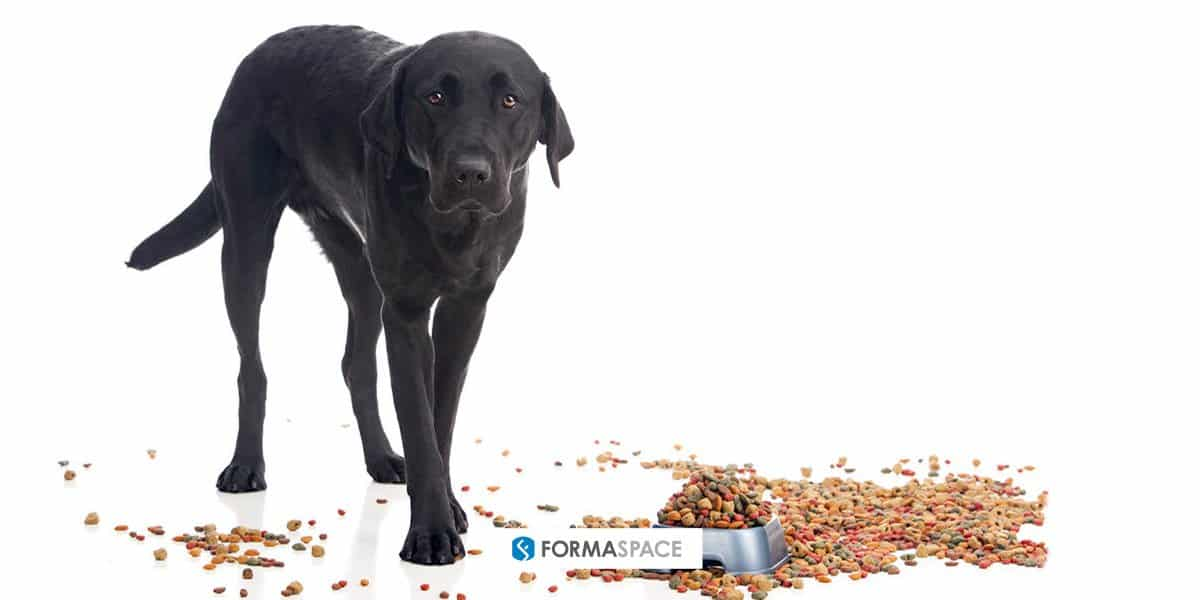 Formaspace pet food testing laboratory discussion