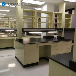 Chemical Resistant Casework with Lab Service Connection & Fume Hoods