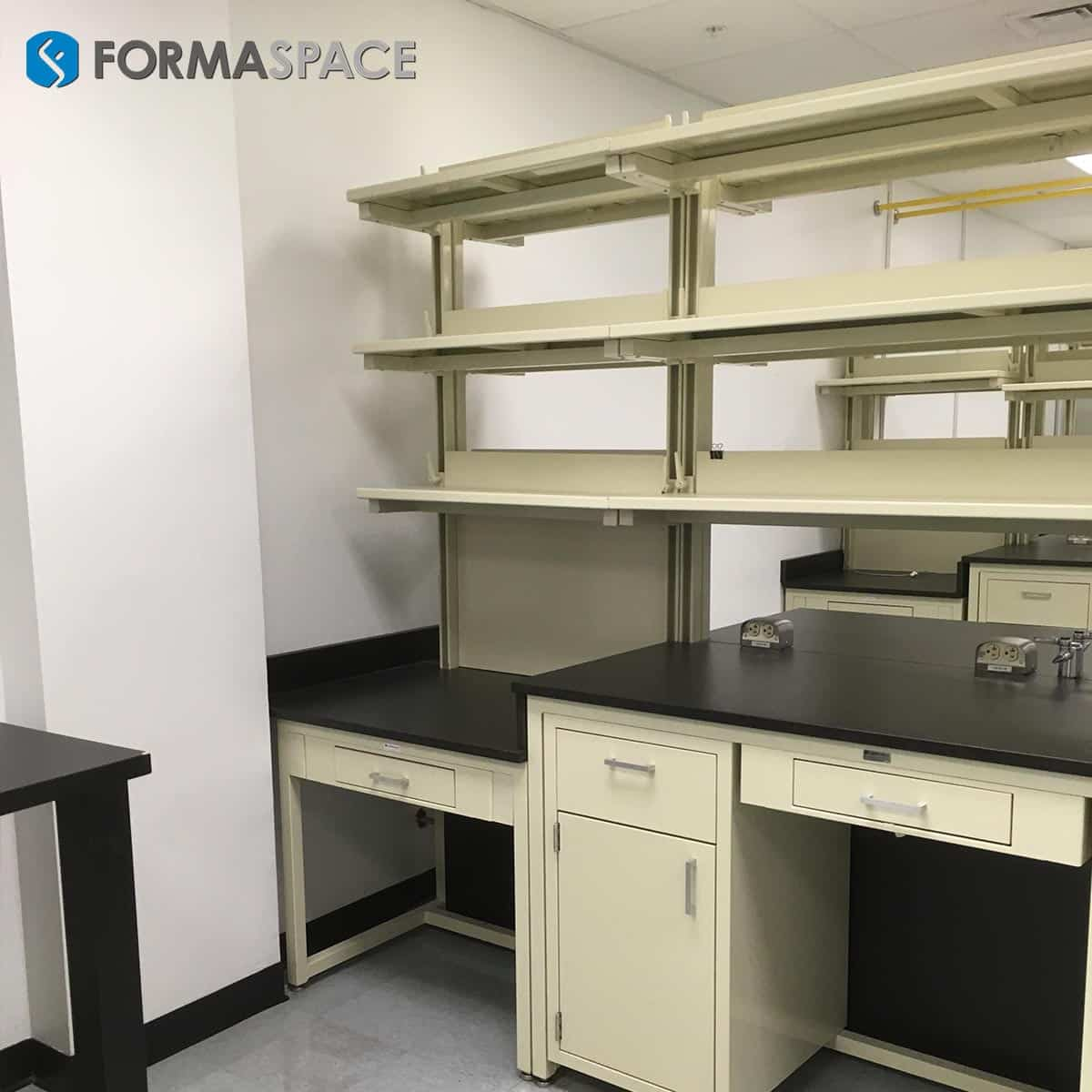 casework and reagent shelves