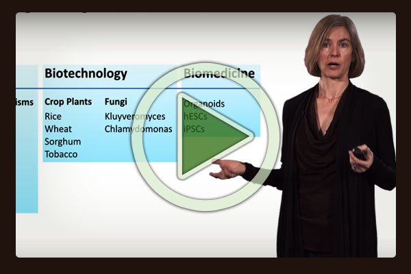 Jennifer Doudna, Professor of the Departments of Chemistry and of Molecular and Cell Biology at University of California, gives us an in-depth overview of what we informally called the cut / copy / paste technique, known officially as CRISPR-Cas9 technology.