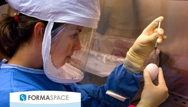 CDC Microbiologist Dr Taronna Maines inoculates a 10-day old emryonated hen′s eggs with a specimen containing an H5N1 avian influenza virus during an experiment at a BSL-3 laboratory to study  pathogenicity and transmissibility of newly emerging H5N1 viruses. Image courtesy Greg Knobloch, CDC.