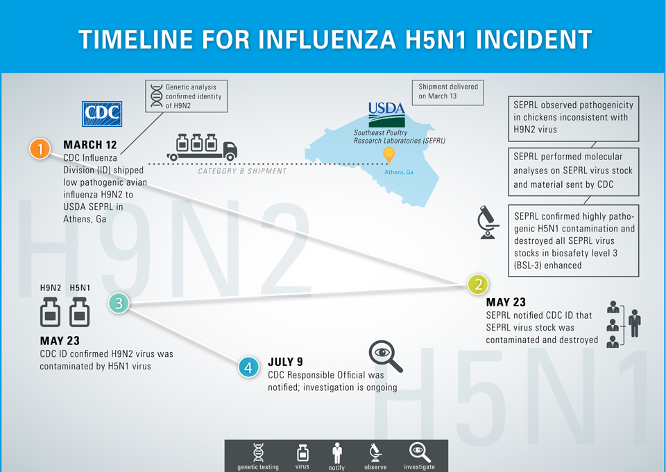 Timeline-for-Influenza-H5N1-Laboratory-Incident